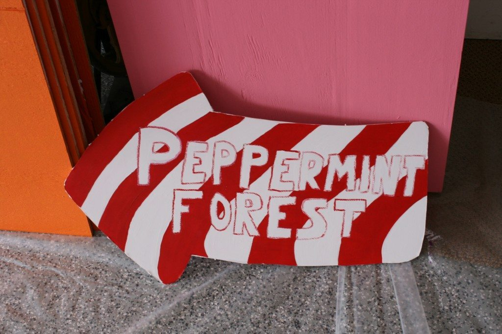 Candy Land Theme Party Part 1 (5)