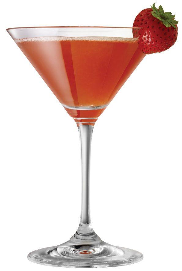 Martini 101 Diy Inspired