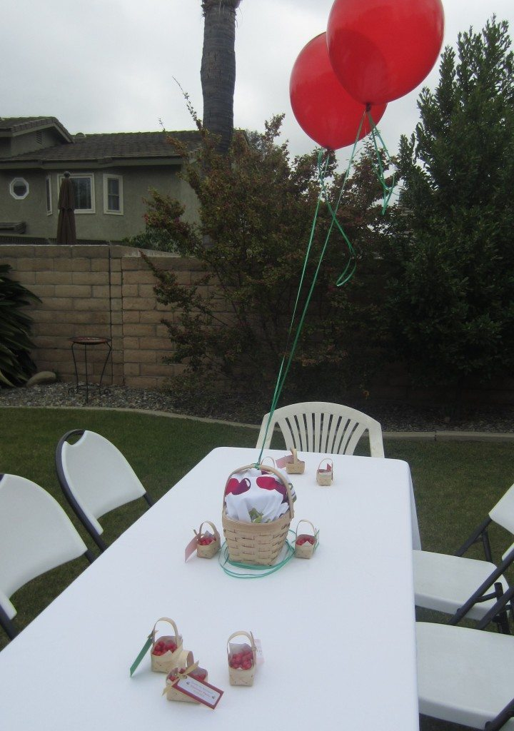 Cherry Themed Twin Baby Shower Diy Inspired