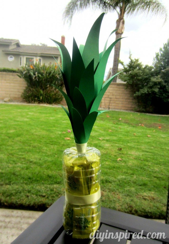 recycled-water-bottle-pineapple (2)