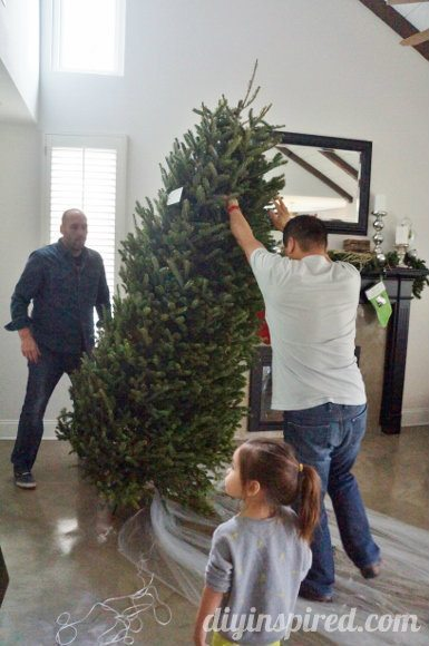christmas-decorations-2013 (6)