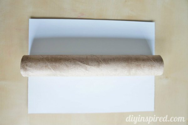 recycled-paper-towel-roll