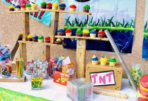 angry-birds-theme-party (8)