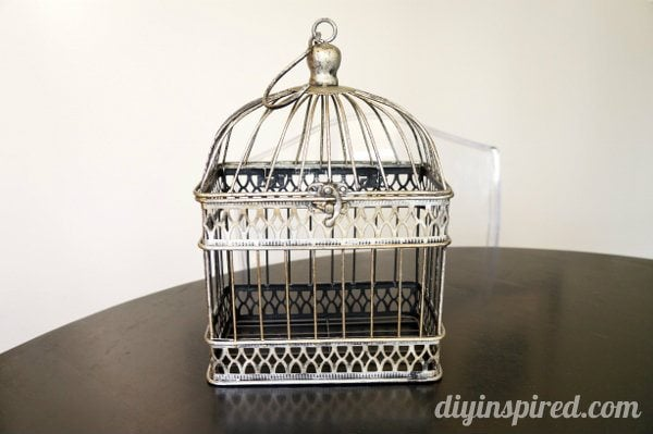 spray-painted-birdcage (1)