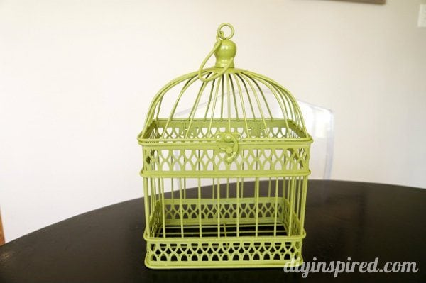 spray-painted-birdcage