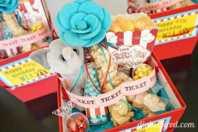 Circus Carnival Theme Party Favors