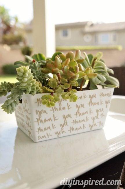 Succulent Hostess Gift Dollar Bin Challenge