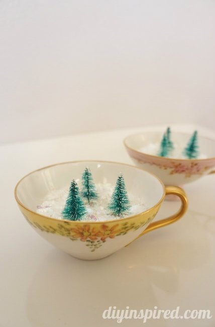 Winter Forest in Vintage Tea Cups