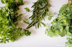 http://www.diyinspired.com/wp-content/uploads/2015/02/Growing-Your-Own-Herbs-1-300x199.jpg