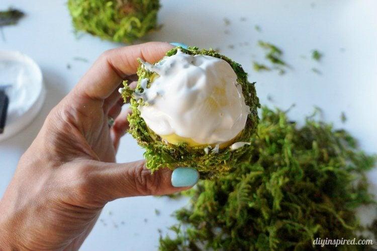 DIY Moss Eggs (2)