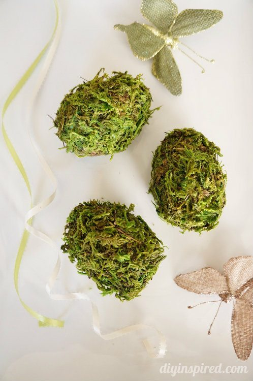 DIY Moss Eggs (6)
