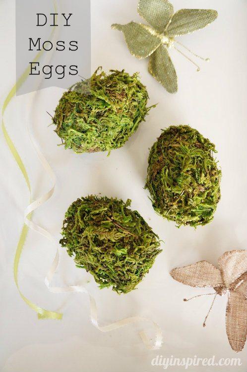 DIY Moss Eggs from Plastic Eggs