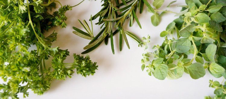 Growing Your Own Herbs (1)