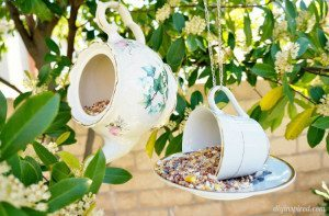 http://www.diyinspired.com/wp-content/uploads/2015/03/Teacup-Bird-Feeder-Repurposing-Idea-300x197.jpg