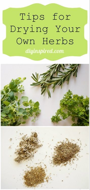 Tips for Drying your own Herbs