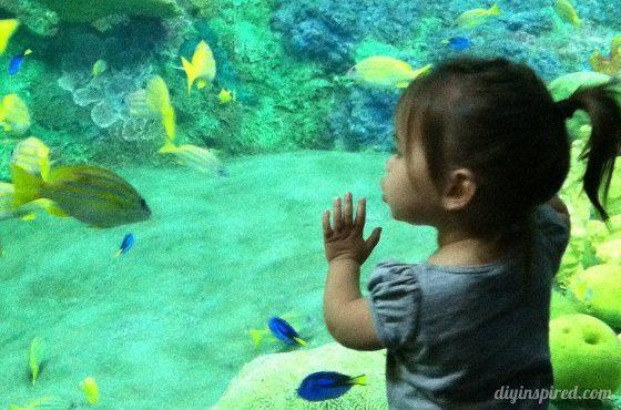 teaching-kids-water-conservation