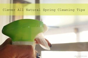 http://www.diyinspired.com/wp-content/uploads/2015/04/Clever-All-Natural-Spring-Cleaning-Tips-300x199.jpg