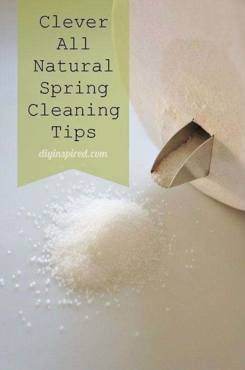Clever All Natural Spring Cleaning