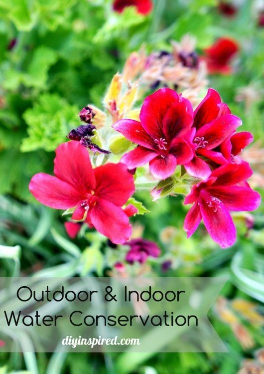 Outdoor and Indoor Water Saving Ideas (1)