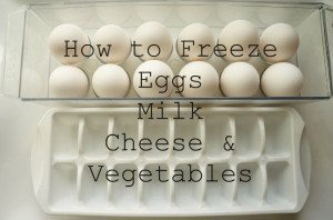 How-to-Freeze-Eggs-Milk-Cheese-and-Vegetables