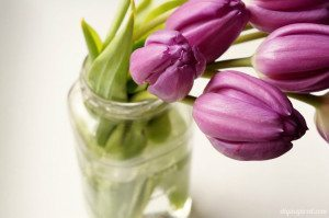 http://www.diyinspired.com/wp-content/uploads/2015/05/Mason-Jar-with-Tulips-300x199.jpg