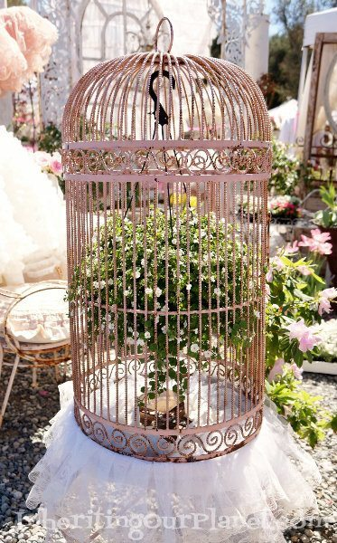 vintage-flea-market-birdcage