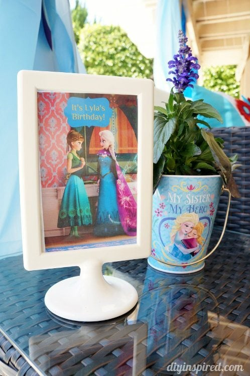 Frozen Fever Party Flowers with Picture