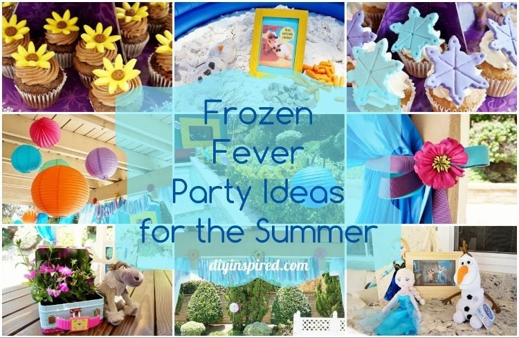 Frozen Fever Summer Birthday Party Ideas