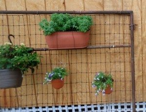 Upcycled Gate Garden