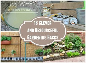 http://www.diyinspired.com/wp-content/uploads/2015/07/Clever-and-Resourceful-Gardening-Hacks-300x220.jpg