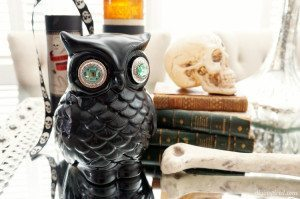 http://www.diyinspired.com/wp-content/uploads/2015/09/Upcycled-Halloween-Owl-300x199.jpg