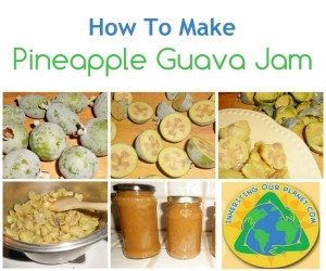 How-to-Make-Pineapple-Guava-Jam