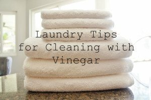 Laundry Tips for Cleaning with Vinegar (6)