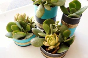 http://www.diyinspired.com/wp-content/uploads/2015/11/Recycled-Can-Centerpieces-with-Succulents-300x199.jpg
