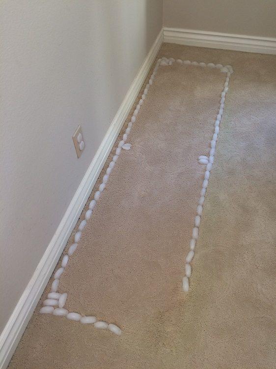 Ice Cube on Carpet Dents Test (7)