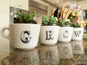 Repurposed Coffee Cup Succulent Garden