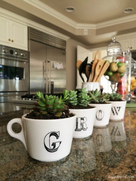 Repurposed Coffee Cup Succulent Garden - DIYInspired