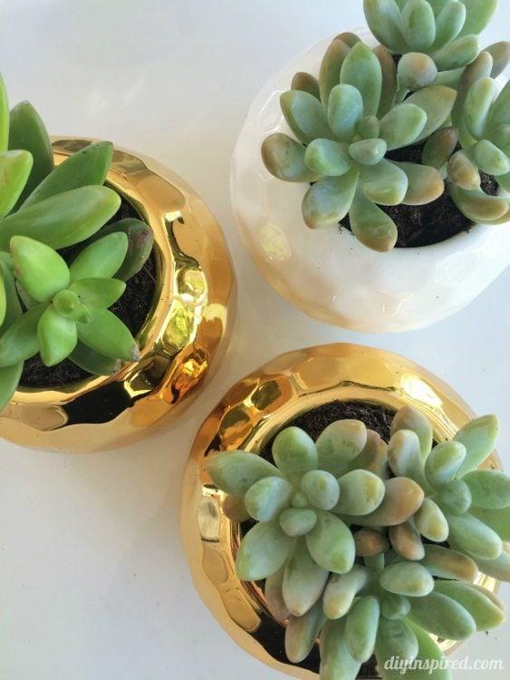 Thank You Gift Idea - DIY Inspired