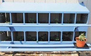 http://www.diyinspired.com/wp-content/uploads/2016/04/Chicken-Nesting-Box-Turned-Herb-Home-Repurposed-300x185.jpg