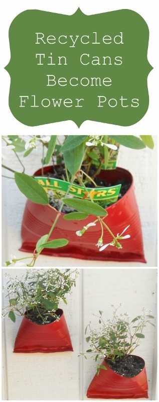 Recycled Tin Cans Become Flower Pots DIY Inspired