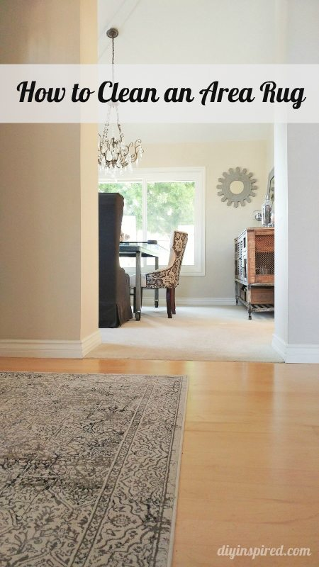how to clean an area rug diy inspired. Black Bedroom Furniture Sets. Home Design Ideas