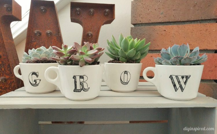 repurposed-coffee-cups-turned-planters