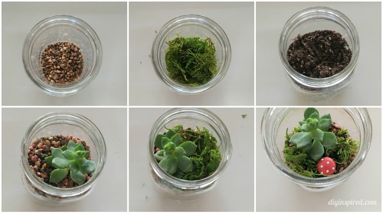 Diy Mason Jar Terrarium With Succulents Diy Inspired